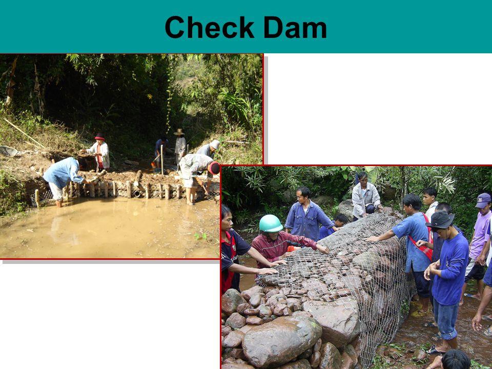 Check Dam