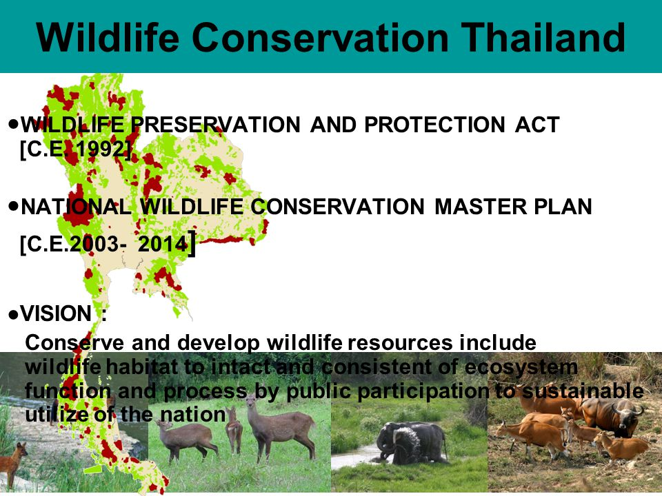Wildlife Conservation Thailand WILDLIFE PRESERVATION AND PROTECTION ACT [C.E.