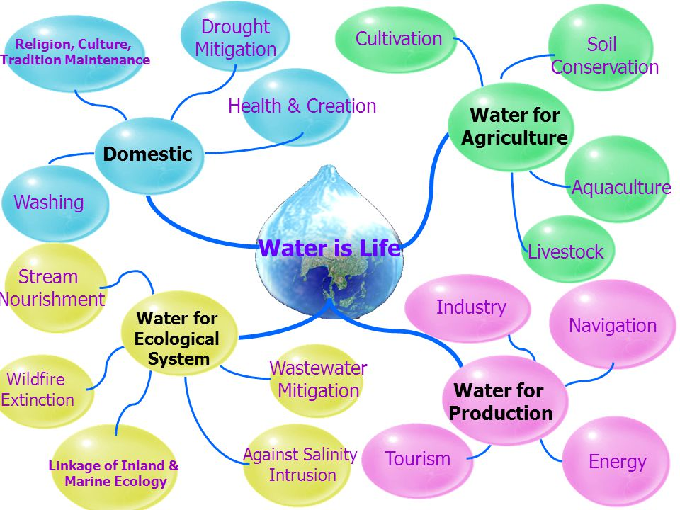 Water is Life Tourism Industry Navigation Energy Religion, Culture, Tradition Maintenance Drought Mitigation Health & Creation Washing Stream Nourishment Wildfire Extinction Against Salinity Intrusion Wastewater Mitigation Cultivation Livestock Aquaculture Linkage of Inland & Marine Ecology Soil Conservation Water for Ecological System Domestic Water for Agriculture Water for Production