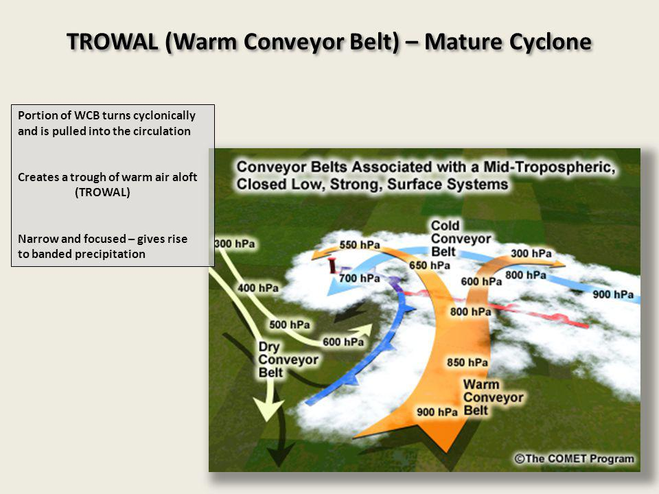 TROWAL (Warm Conveyor Belt) – Mature Cyclone Portion of WCB turns cyclonically and is pulled into the circulation Creates a trough of warm air aloft (TROWAL) Narrow and focused – gives rise to banded precipitation