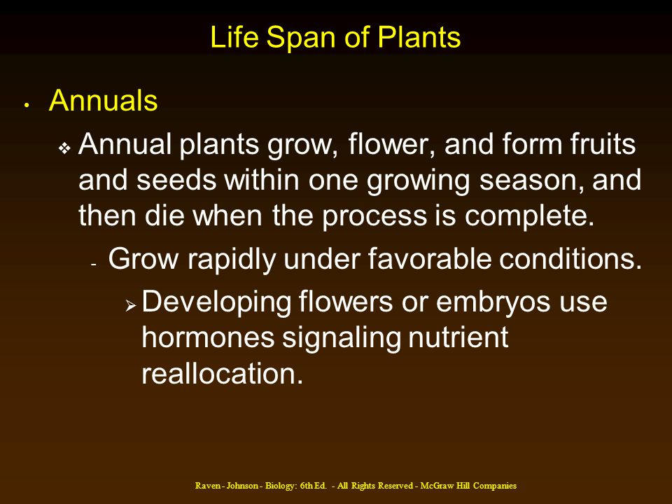 Raven - Johnson - Biology: 6th Ed. - All Rights Reserved - McGraw Hill Companies Life Span of Plants Annuals Annual plants grow, flower, and form frui
