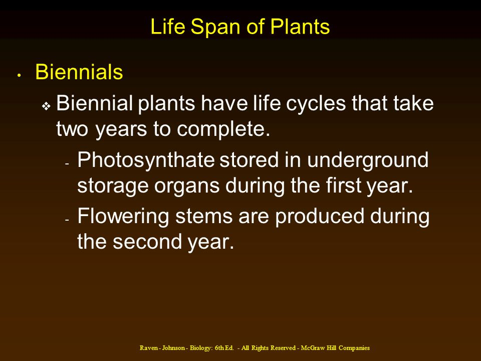 Raven - Johnson - Biology: 6th Ed. - All Rights Reserved - McGraw Hill Companies Life Span of Plants Biennials Biennial plants have life cycles that t