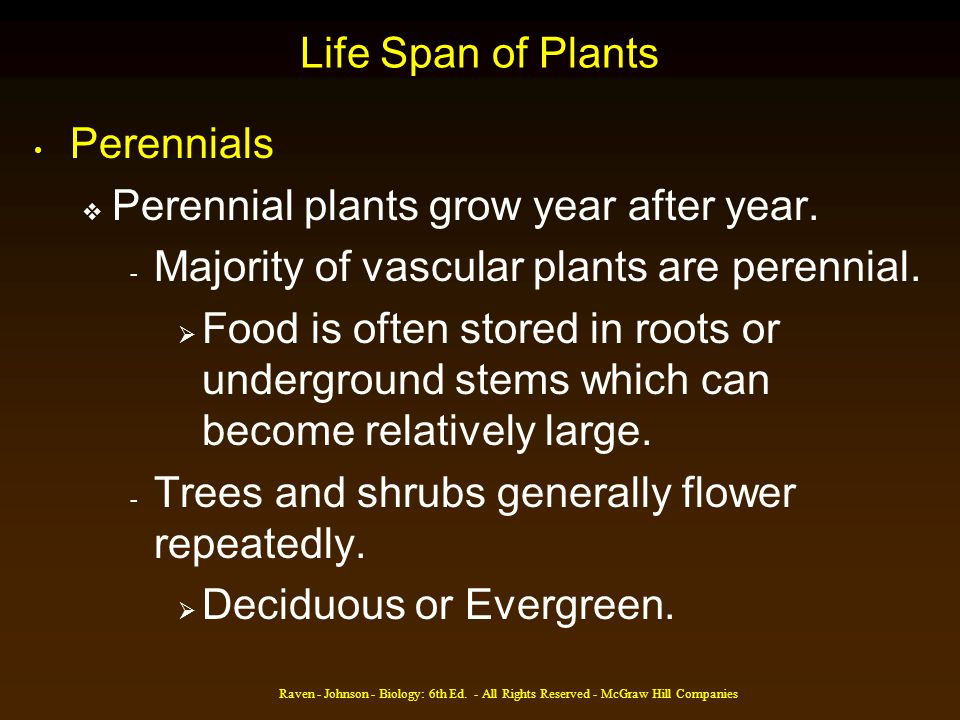 Raven - Johnson - Biology: 6th Ed. - All Rights Reserved - McGraw Hill Companies Life Span of Plants Perennials Perennial plants grow year after year.
