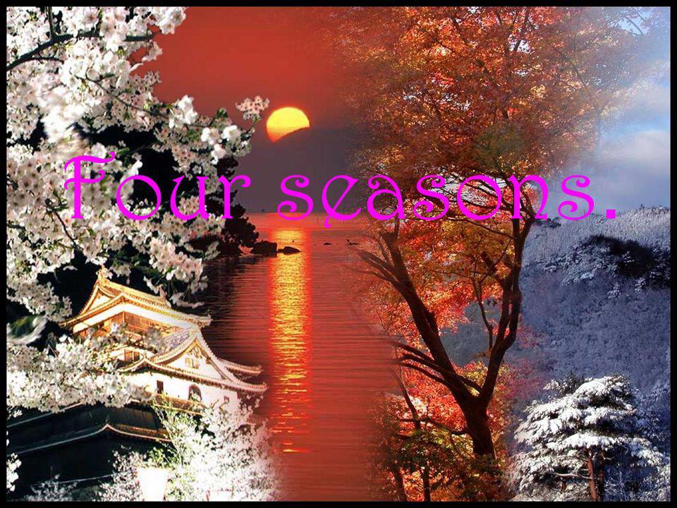 Four seasons.