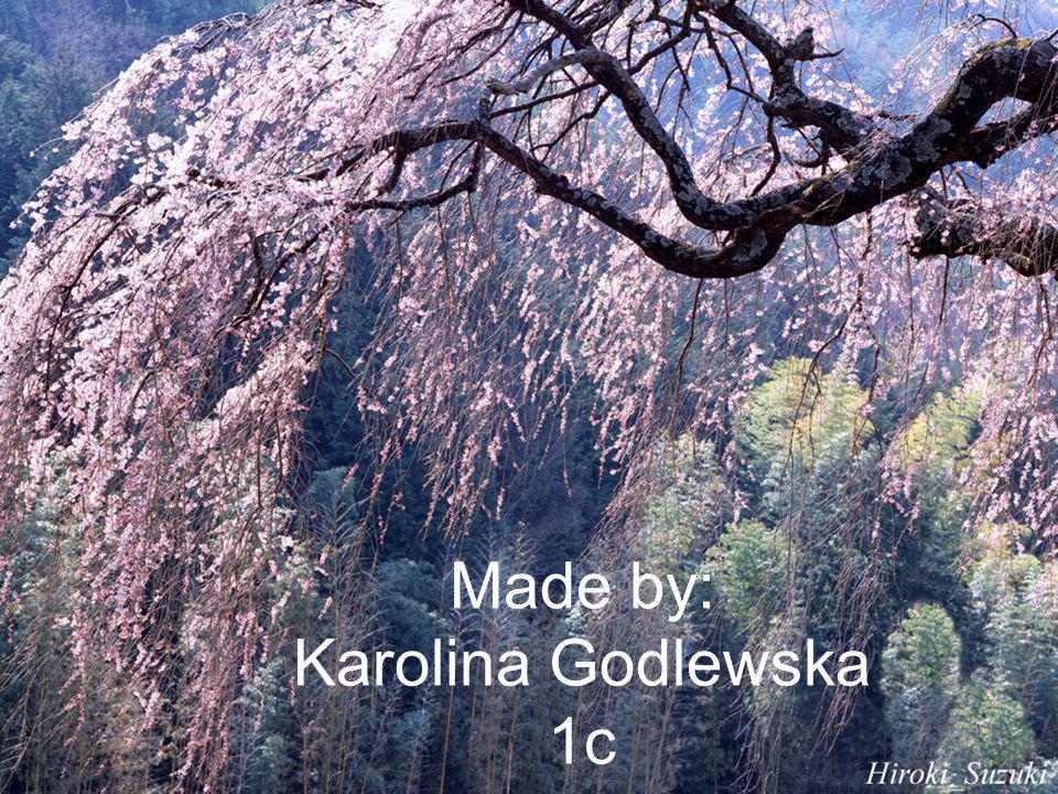 Made by: Karolina Godlewska 1c