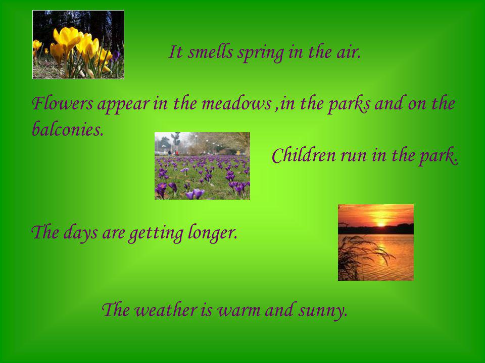 It smells spring in the air. Flowers appear in the meadows,in the parks and on the balconies. Children run in the park. The days are getting longer. T