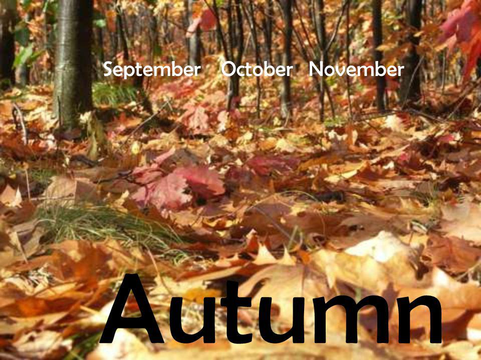 Its the time to change the clock.Its gets dark early and the days get shorter.