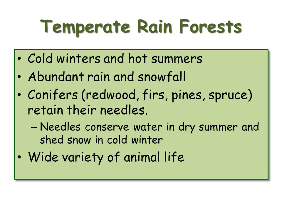 Temperate Rain Forests Cold winters and hot summers Abundant rain and snowfall Conifers (redwood, firs, pines, spruce) retain their needles.