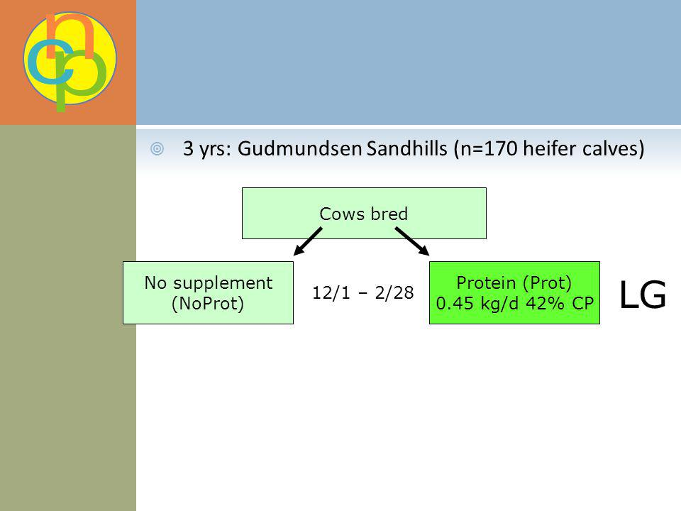 3 yrs: Gudmundsen Sandhills (n=170 heifer calves) Cows bred No supplement (NoProt) Protein (Prot) 0.45 kg/d 42% CP 12/1 – 2/28 LG
