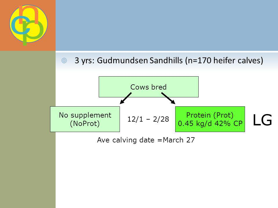 3 yrs: Gudmundsen Sandhills (n=170 heifer calves) Cows bred No supplement (NoProt) Protein (Prot) 0.45 kg/d 42% CP 12/1 – 2/28 LG Ave calving date =Ma