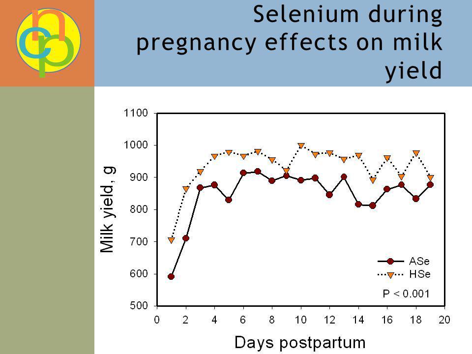 Selenium during pregnancy effects on milk yield