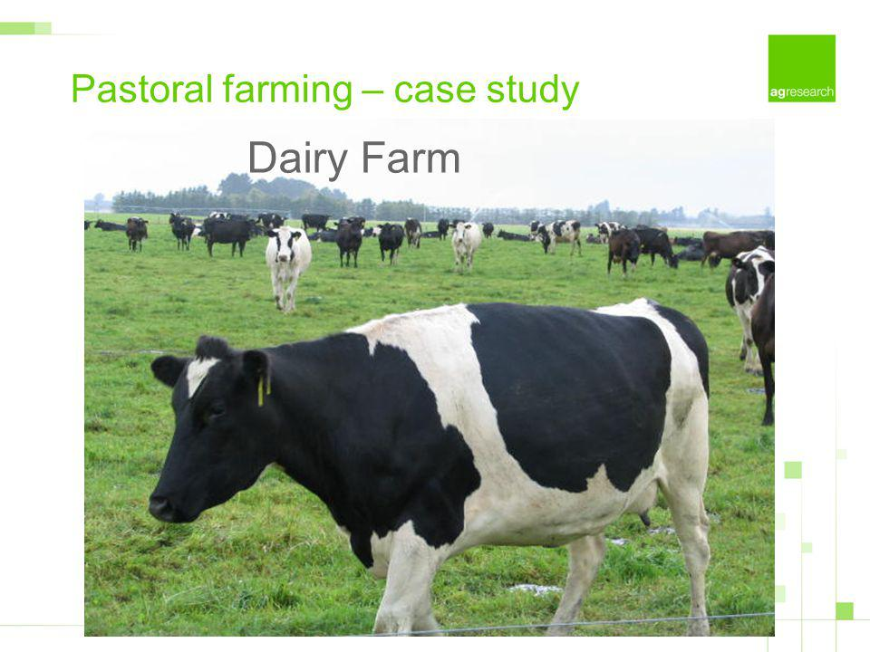 Pastoral farming – case study Dairy Farm
