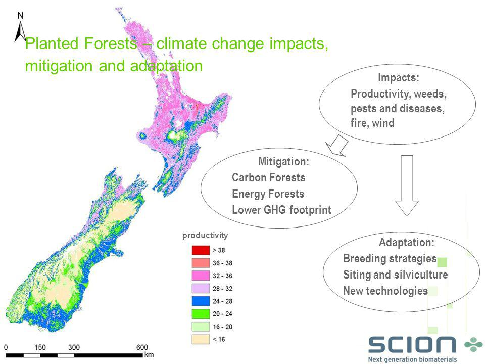 Planted Forests – climate change impacts, mitigation and adaptation productivity Impacts: Productivity, weeds, pests and diseases, fire, wind Mitigation: Carbon Forests Energy Forests Lower GHG footprint Adaptation: Breeding strategies Siting and silviculture New technologies