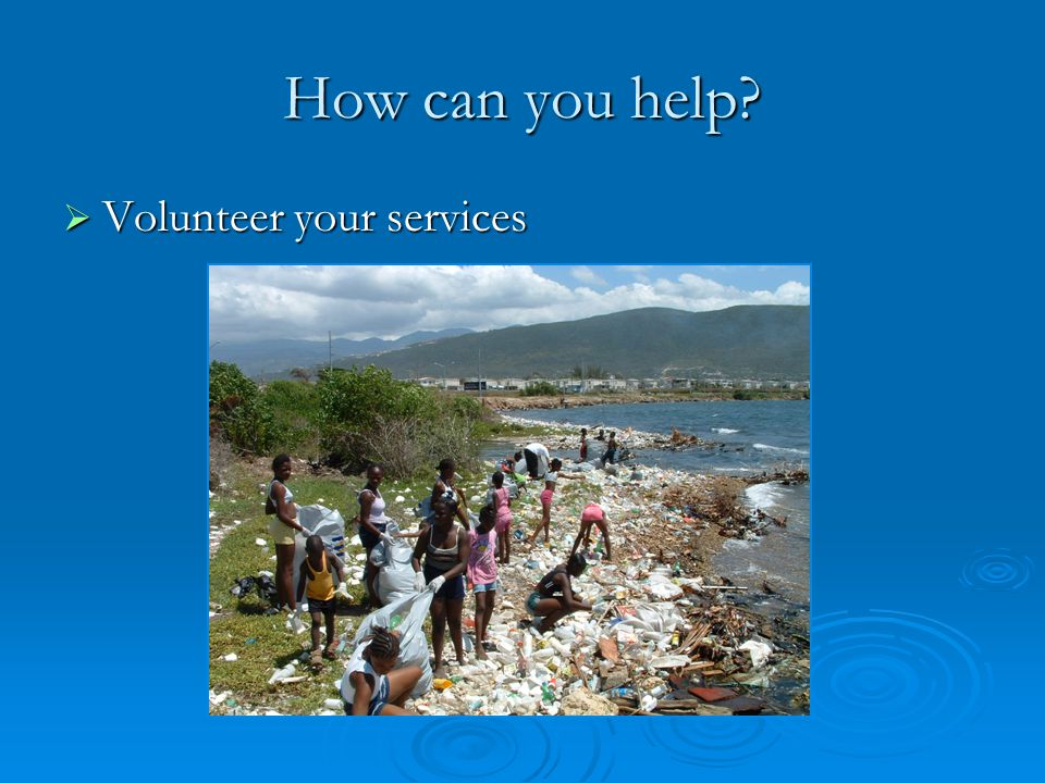 How can you help? Volunteer your services Volunteer your services