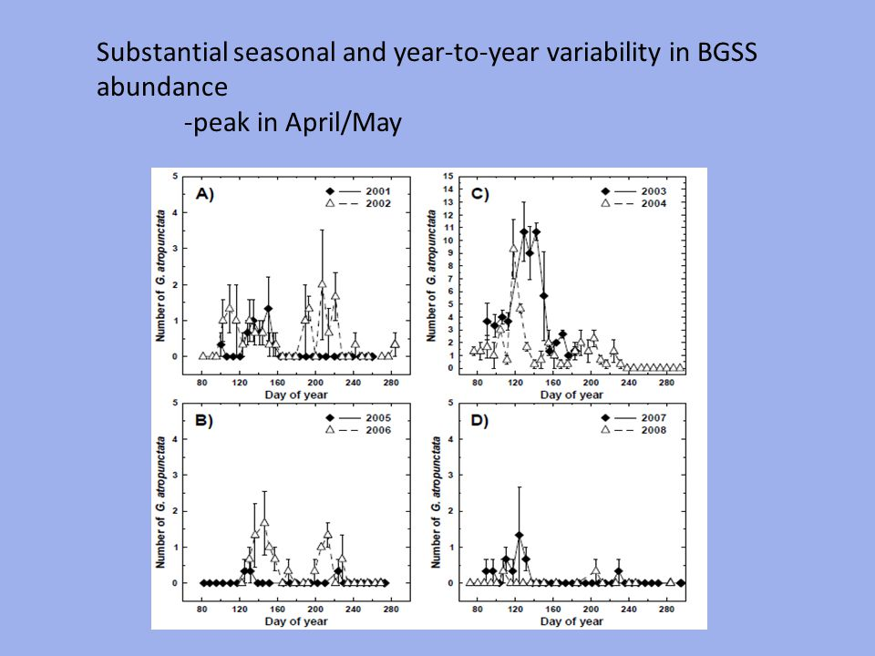 Substantial seasonal and year-to-year variability in BGSS abundance -peak in April/May