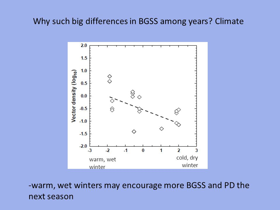 Why such big differences in BGSS among years? Climate cold, dry winter warm, wet winter -warm, wet winters may encourage more BGSS and PD the next sea