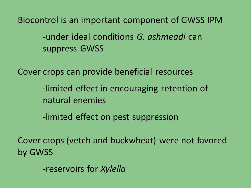 Biocontrol is an important component of GWSS IPM -under ideal conditions G. ashmeadi can suppress GWSS Cover crops can provide beneficial resources -l
