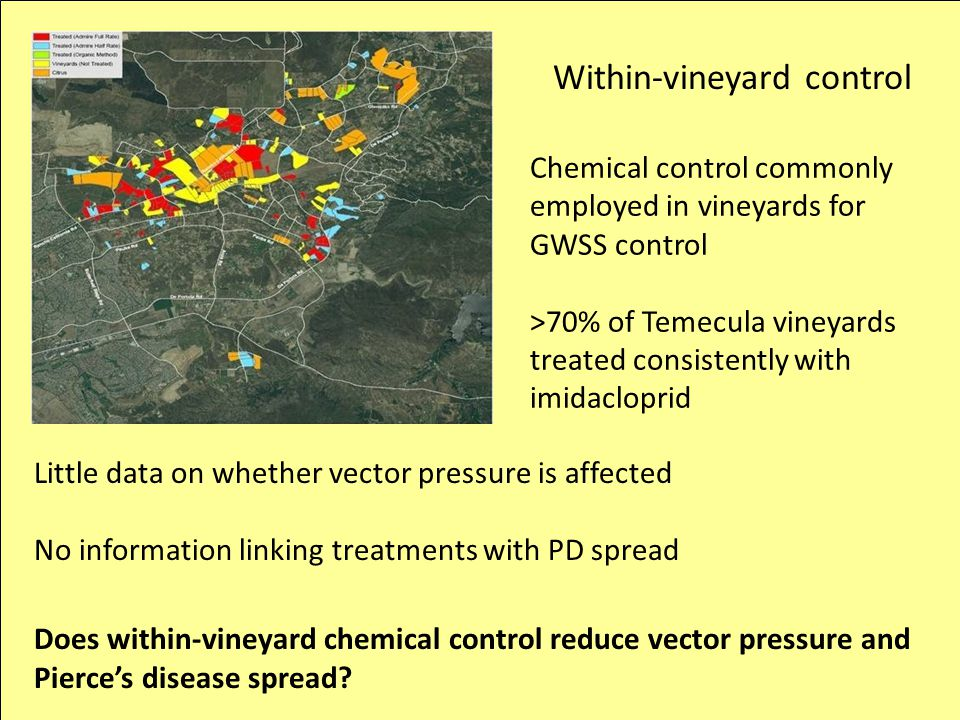 Within-vineyard control Chemical control commonly employed in vineyards for GWSS control >70% of Temecula vineyards treated consistently with imidaclo