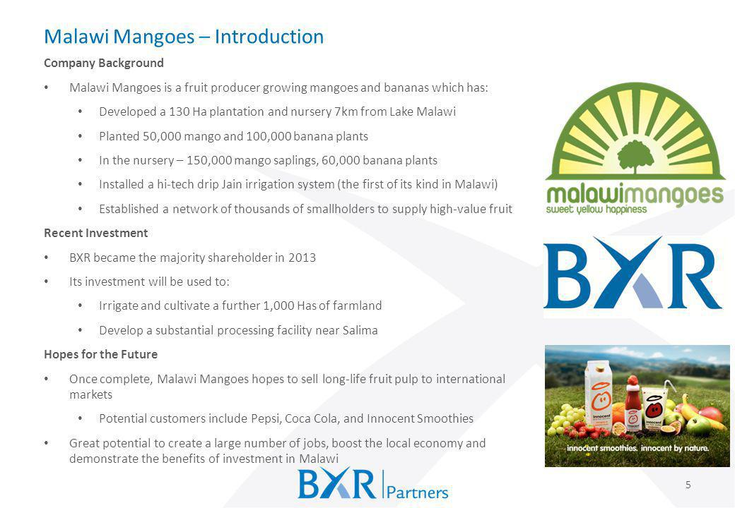Malawi Mangoes – Introduction 5 Company Background Malawi Mangoes is a fruit producer growing mangoes and bananas which has: Developed a 130 Ha planta