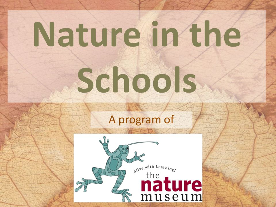 What is the Nature in the Schools Program.