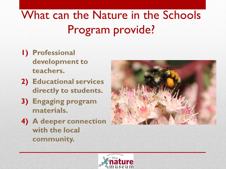 1)The Nature Museum provides professional development to teachers.