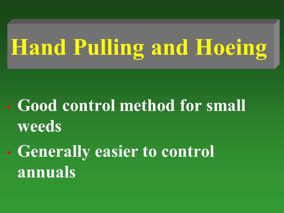Good control method for small weeds Generally easier to control annuals Hand Pulling and Hoeing
