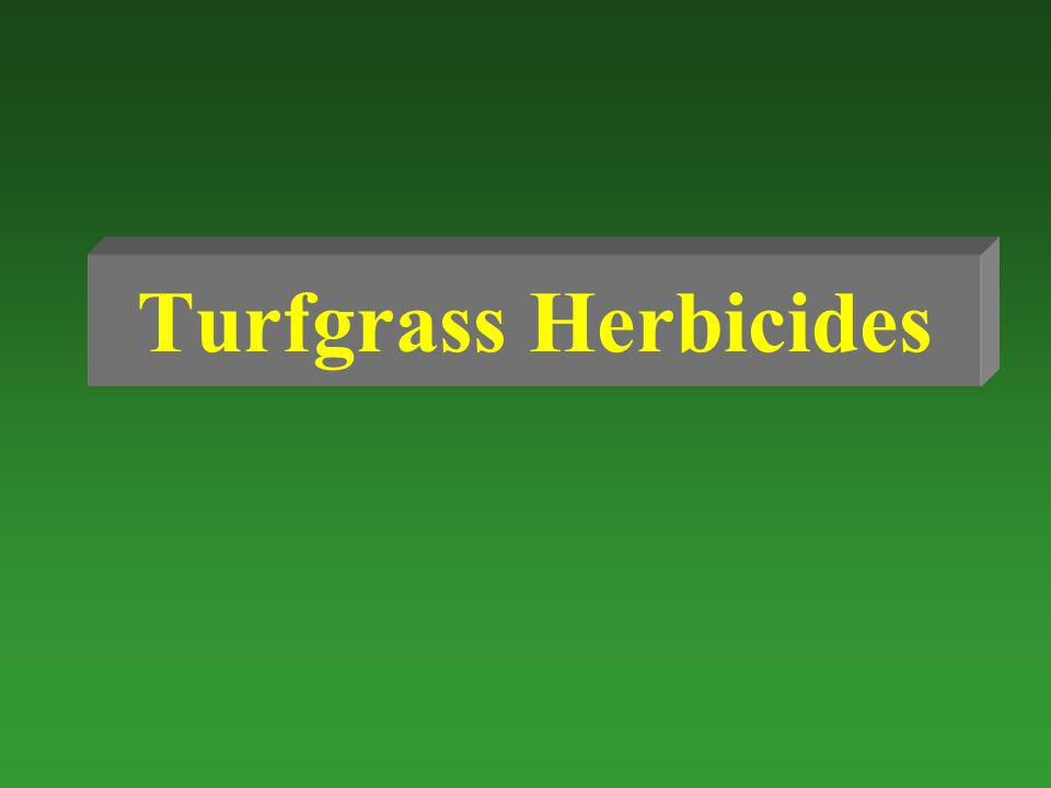 Turfgrass Herbicides