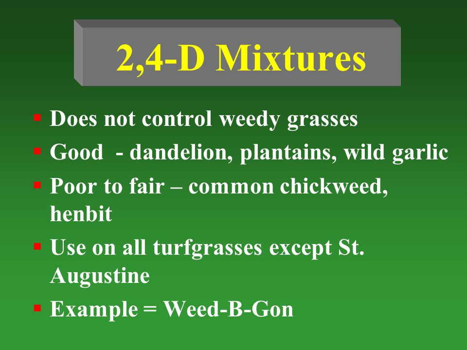 2,4-D Mixtures Does not control weedy grasses Good - dandelion, plantains, wild garlic Poor to fair – common chickweed, henbit Use on all turfgrasses