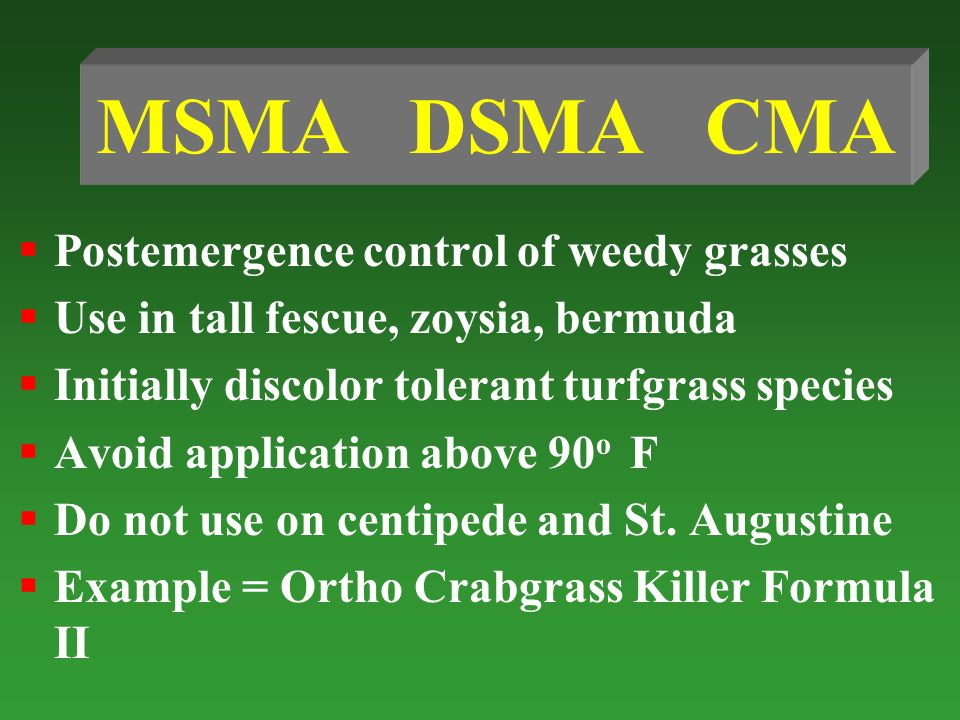 MSMA DSMA CMA Postemergence control of weedy grasses Use in tall fescue, zoysia, bermuda Initially discolor tolerant turfgrass species Avoid application above 90 o F Do not use on centipede and St.