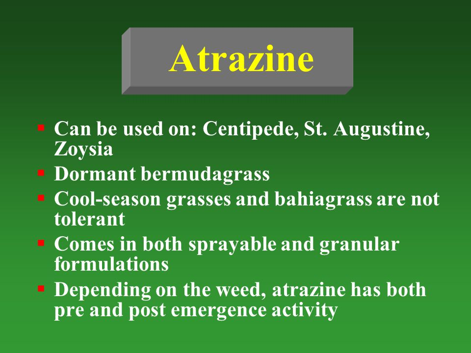Atrazine Can be used on: Centipede, St. Augustine, Zoysia Dormant bermudagrass Cool-season grasses and bahiagrass are not tolerant Comes in both spray