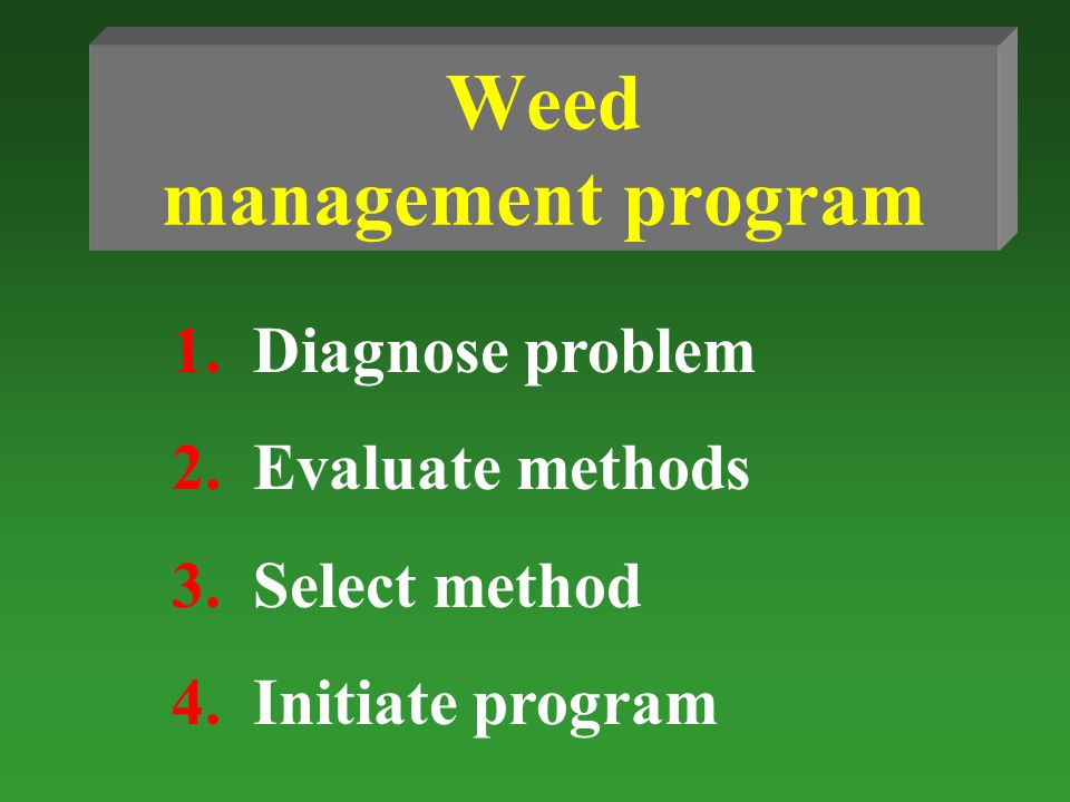 Weed management program 1.Diagnose problem 2.Evaluate methods 3.Select method 4.Initiate program