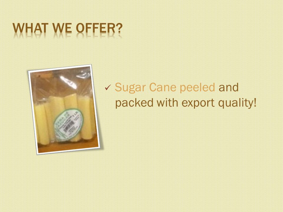 Sugar Cane peeled and packed with export quality!