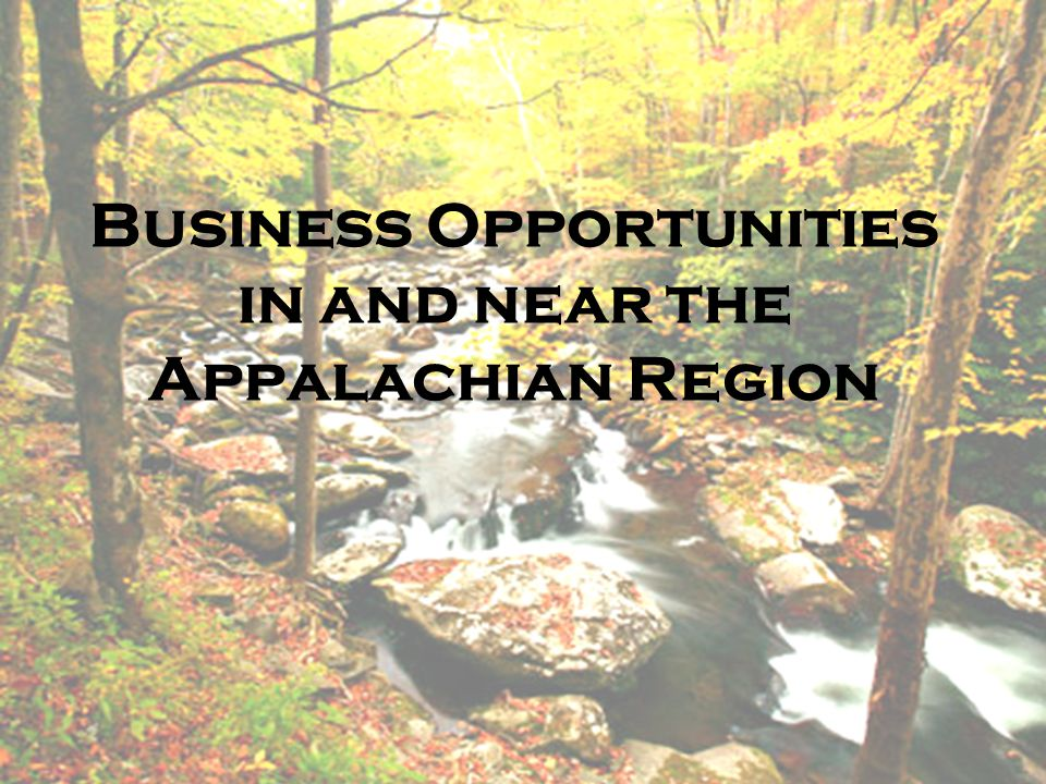 Business Opportunities in and near the Appalachian Region