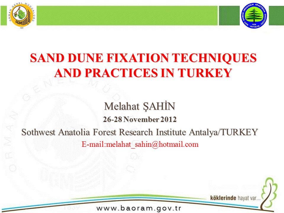 For black sea region Species for afforestration sand dunes in Turkey P.