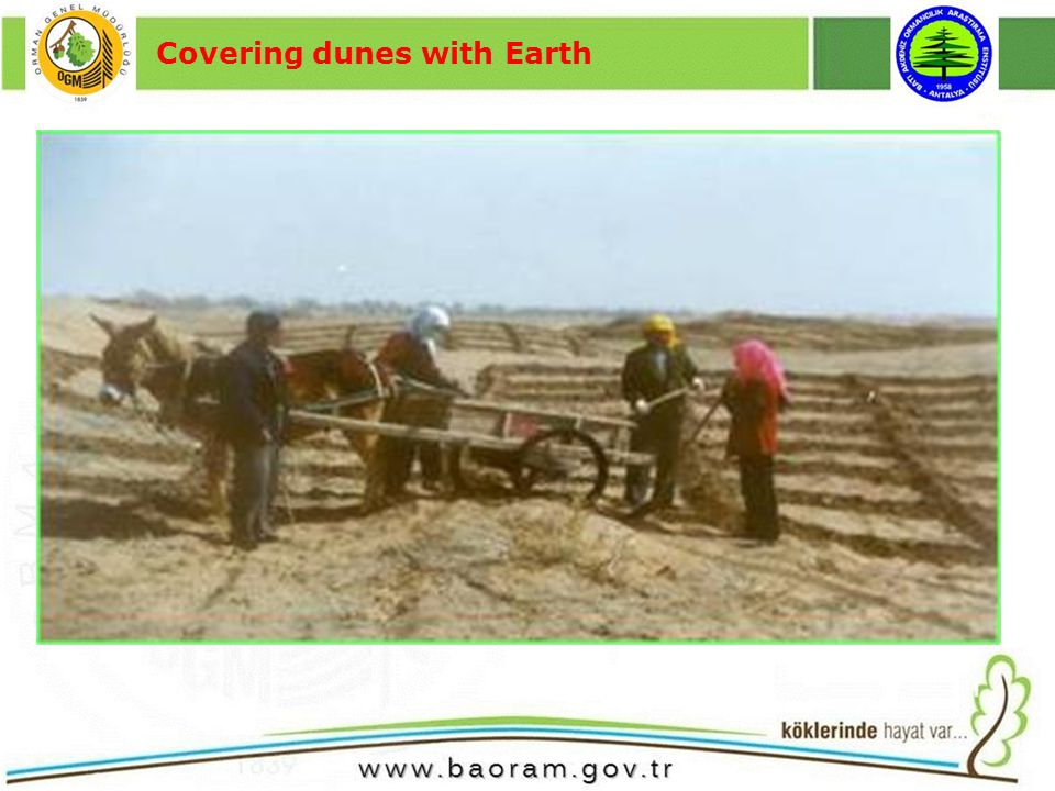 Covering dunes with Earth