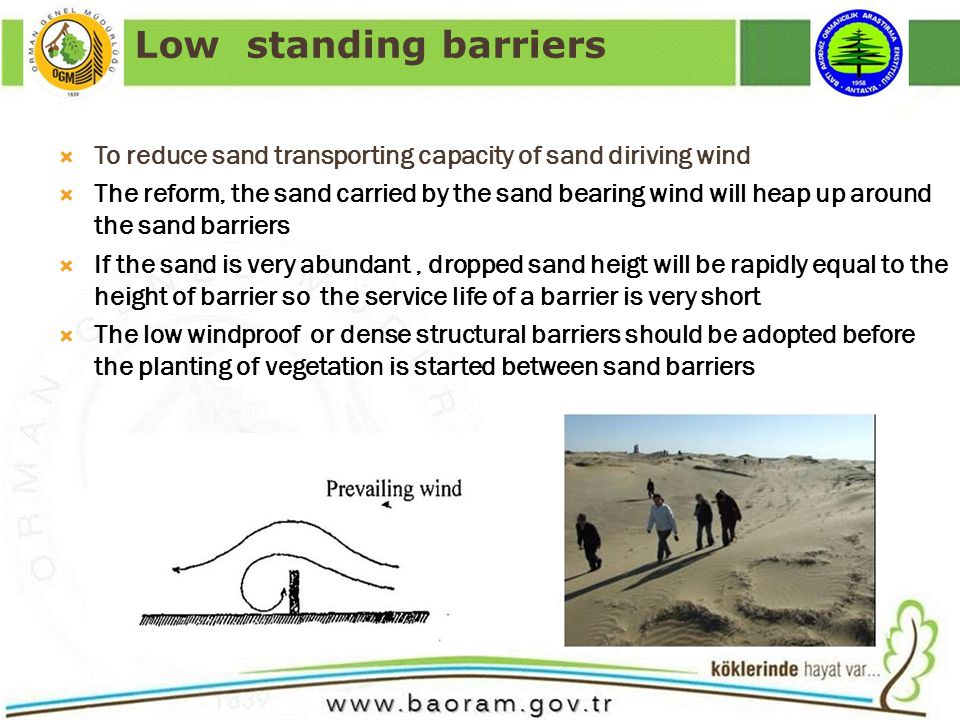 To reduce sand transporting capacity of sand diriving wind The reform, the sand carried by the sand bearing wind will heap up around the sand barriers If the sand is very abundant, dropped sand heigt will be rapidly equal to the height of barrier so the service life of a barrier is very short The low windproof or dense structural barriers should be adopted before the planting of vegetation is started between sand barriers