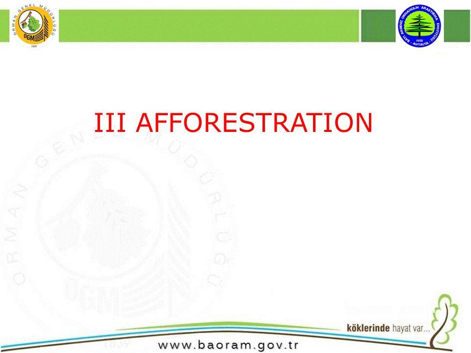 III AFFORESTRATION