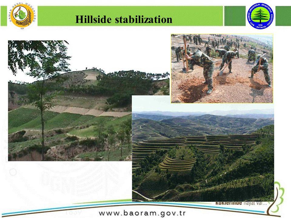 Hillside stabilization