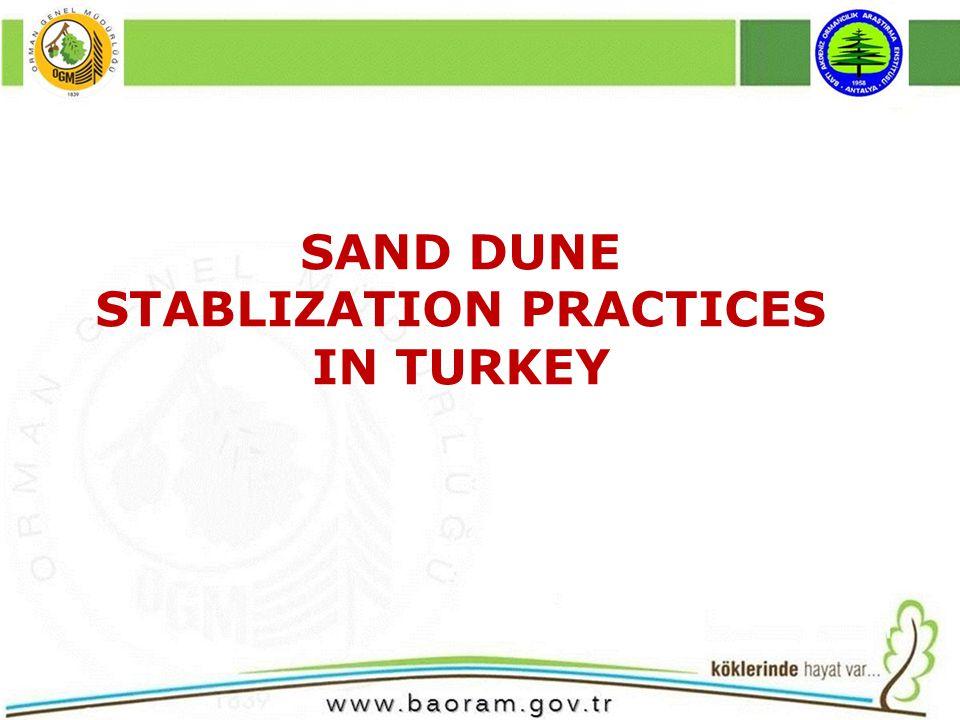 SAND DUNE STABLIZATION PRACTICES IN TURKEY
