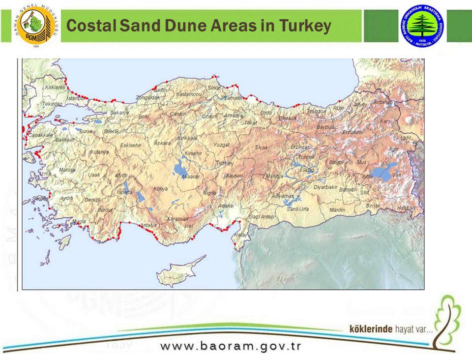 Costal Sand Dune Areas in Turkey
