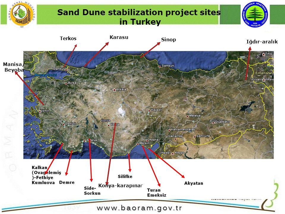 Konya-karapınar Manisa/ Beyoba Terkos Karasu Sinop Iğdır-aralık Sand Dune stabilization project sites in Turkey