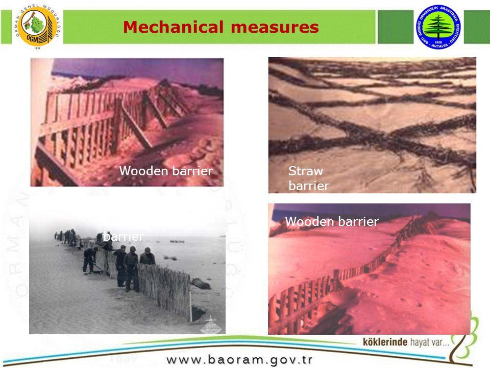 Mechanical measures Wooden barrier Reeds stem barrier Straw barrier Wooden barrier