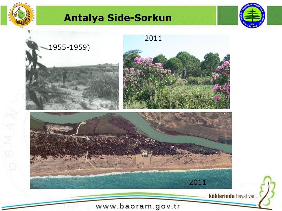 Antalya Side-Sorkun 1955-1959) 2011