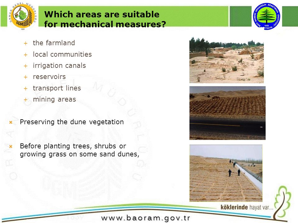 Understanding the seasonal rainfall patterns that are critical for tree or shrub species to survive and grow As a general rule, a tree or shrub species can be moved successfully from its home range to another areas of same latitude because of similarity in climate Considering the following necessities to ensure suc c es s ful results; site preparation, when to plant, how to plant, the spacing and arrangement of the plantings, and care after planting