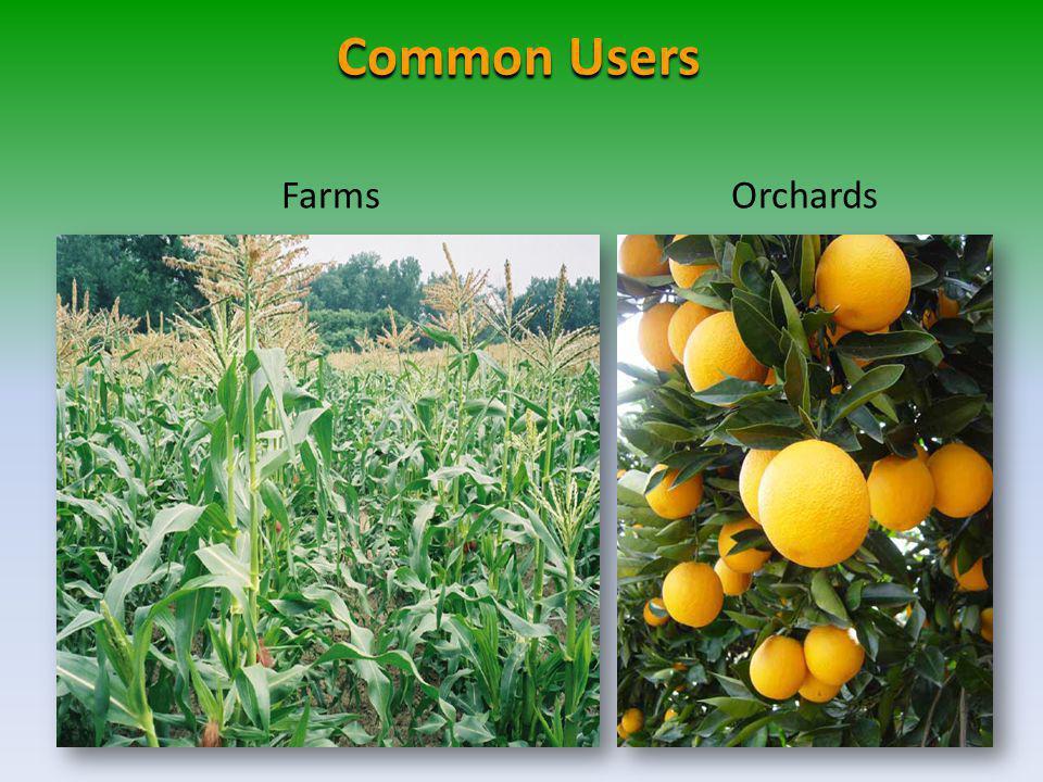 FarmsOrchards Common Users