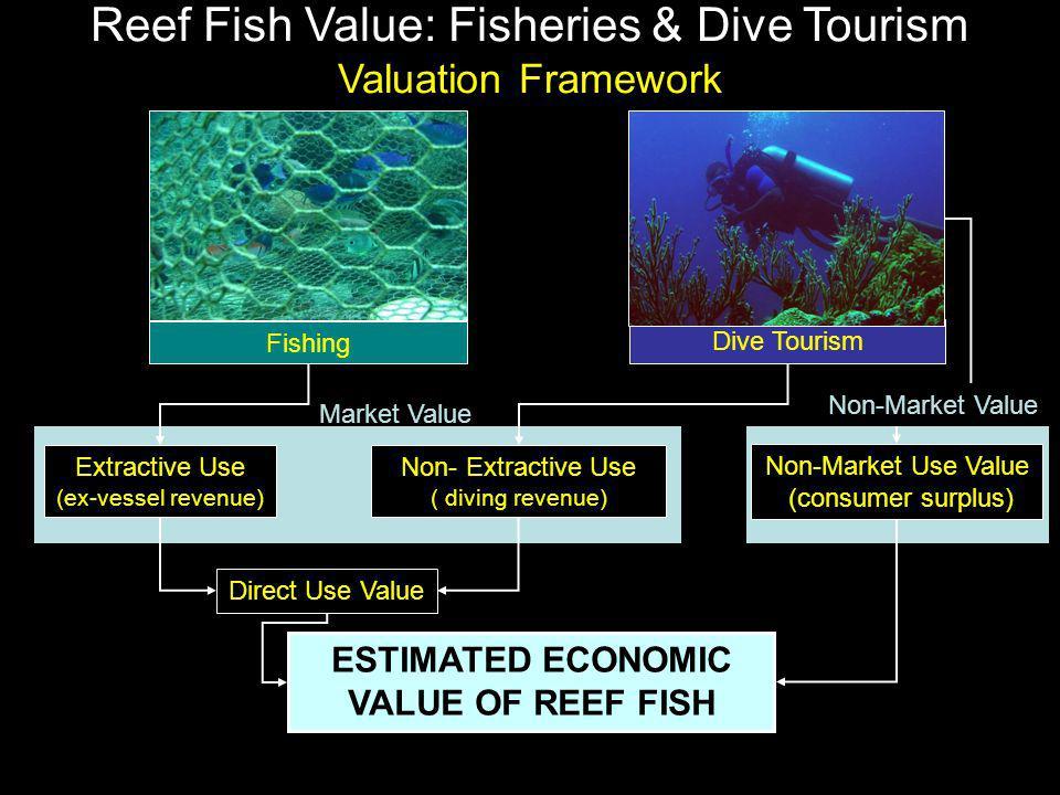 Market Value Direct Use Value Non- Extractive Use ( diving revenue) Extractive Use (ex-vessel revenue) Non-Market Use Value (consumer surplus) ESTIMAT