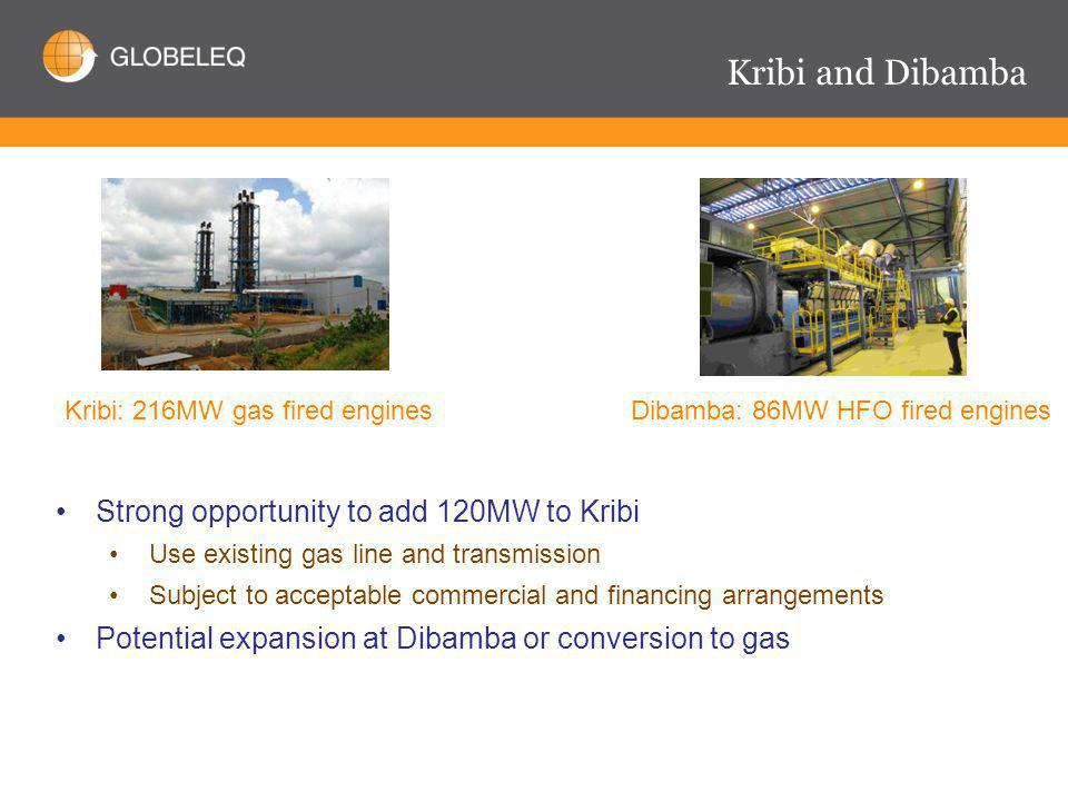 Kribi and Dibamba Dibamba: 86MW HFO fired engines Kribi: 216MW gas fired engines Strong opportunity to add 120MW to Kribi Use existing gas line and transmission Subject to acceptable commercial and financing arrangements Potential expansion at Dibamba or conversion to gas