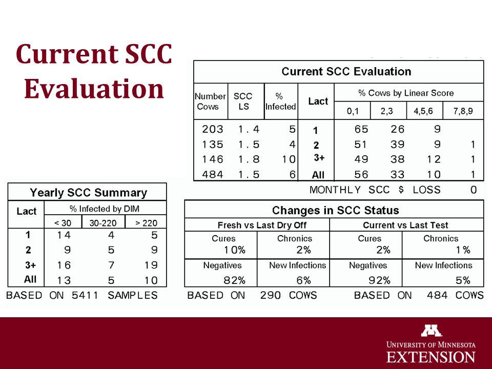Current SCC Evaluation