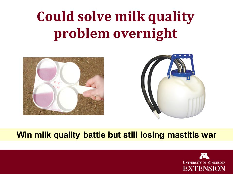 Could solve milk quality problem overnight Win milk quality battle but still losing mastitis war