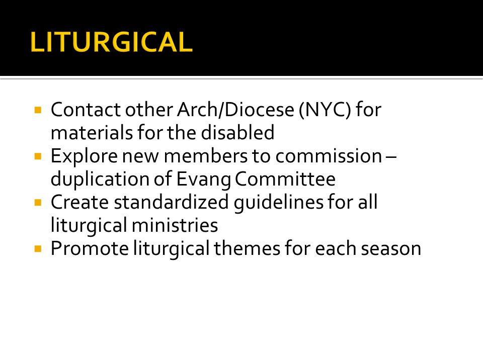 Contact other Arch/Diocese (NYC) for materials for the disabled Explore new members to commission – duplication of Evang Committee Create standardized